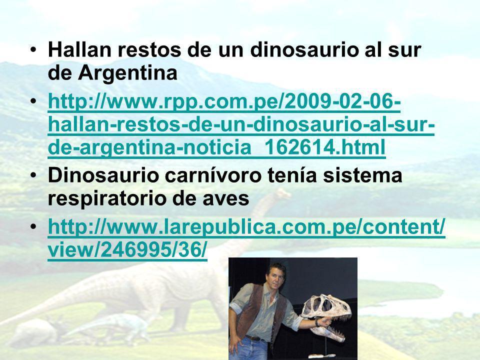 Hallan restos de un dinosaurio al sur de Argentina