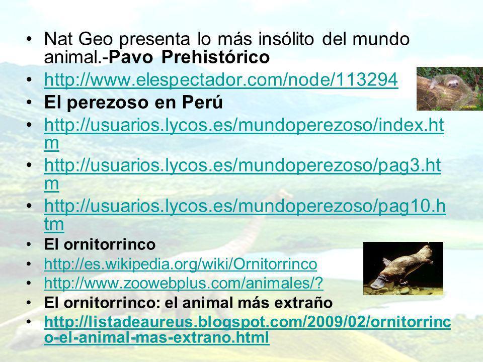 Nat Geo presenta lo más insólito del mundo animal.-Pavo Prehistórico