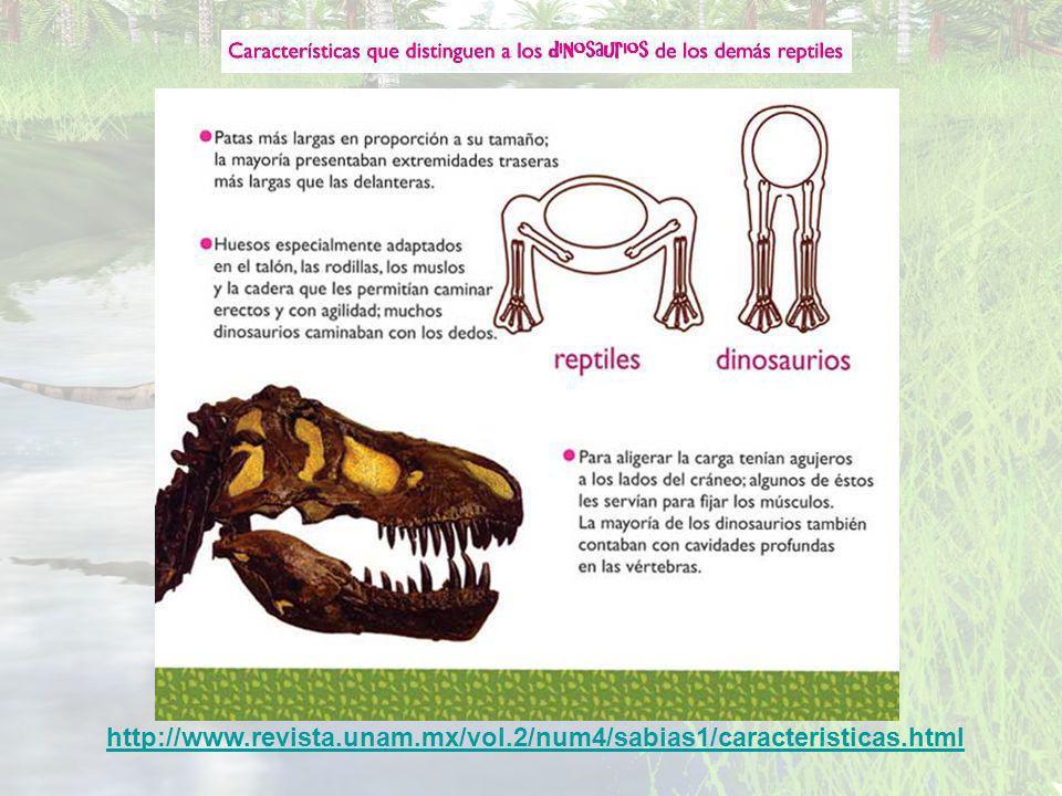 http://www.revista.unam.mx/vol.2/num4/sabias1/caracteristicas.html