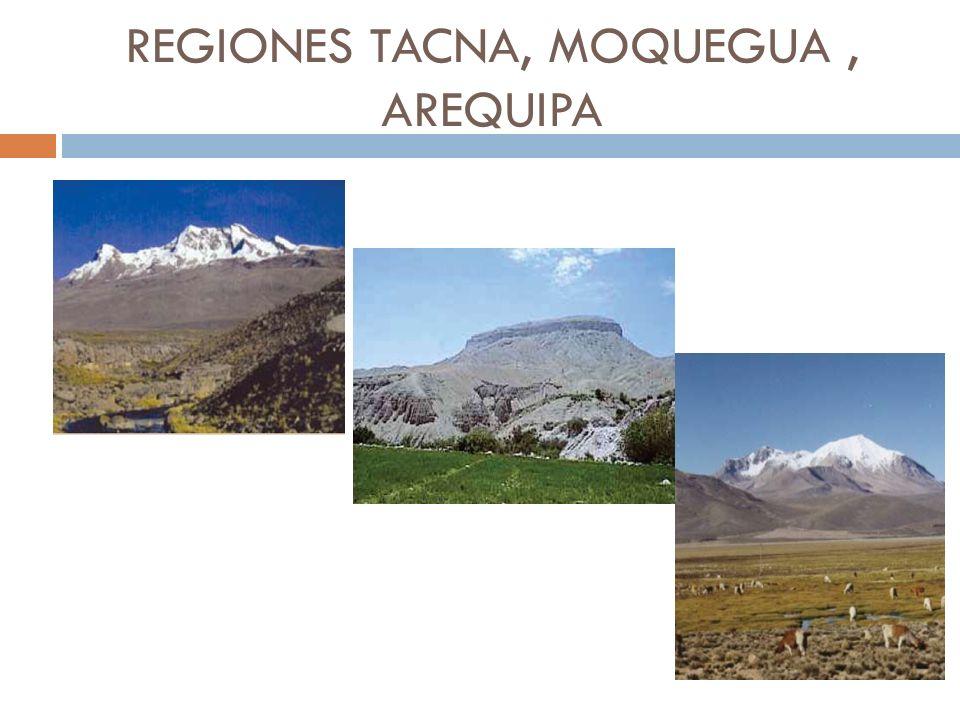 REGIONES TACNA, MOQUEGUA , AREQUIPA