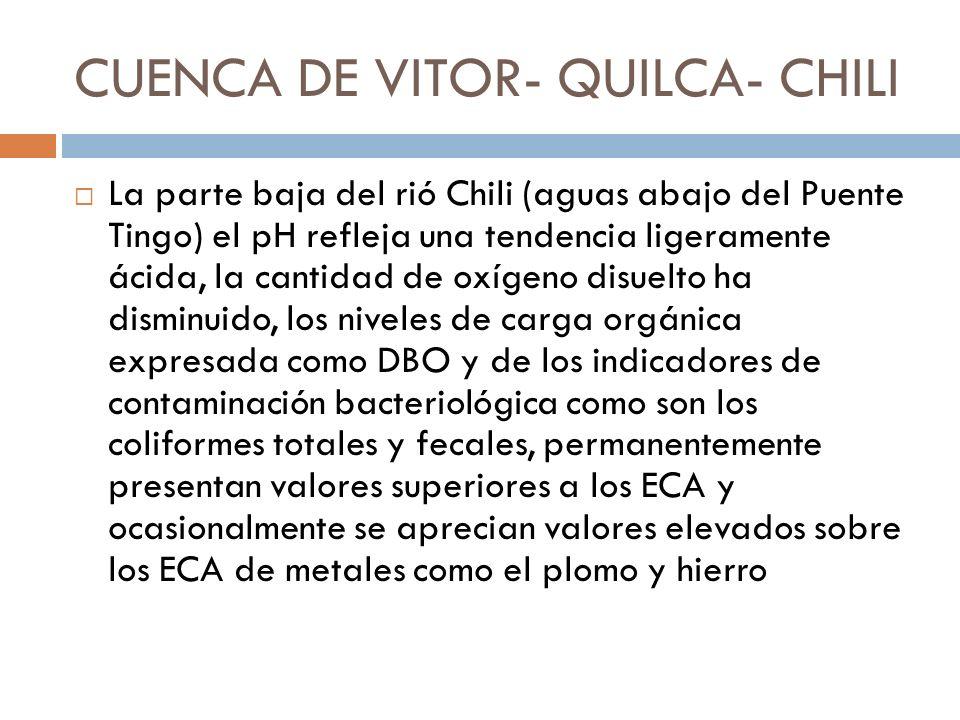 CUENCA DE VITOR- QUILCA- CHILI
