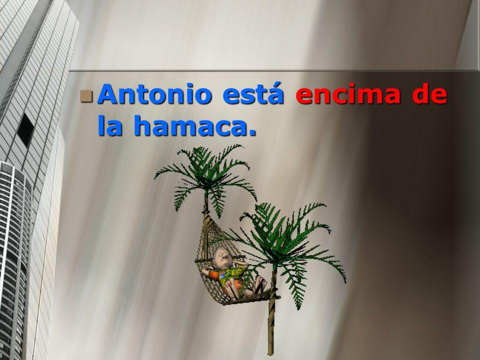 Antonio está encima de la hamaca.