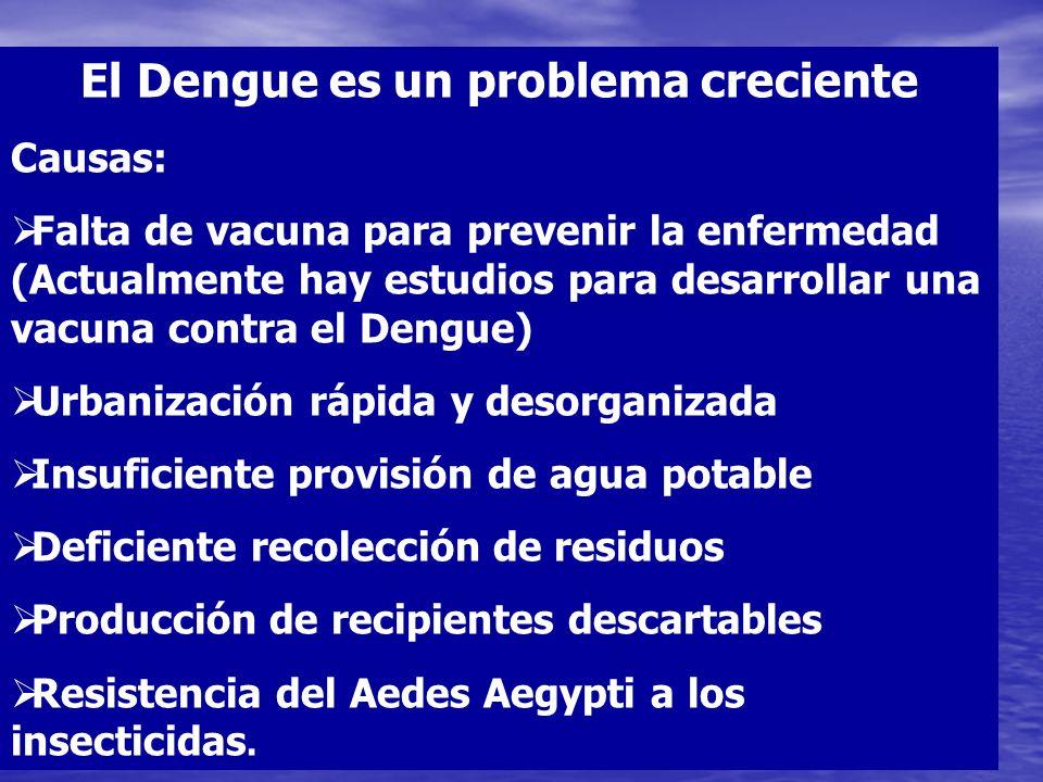 El Dengue es un problema creciente