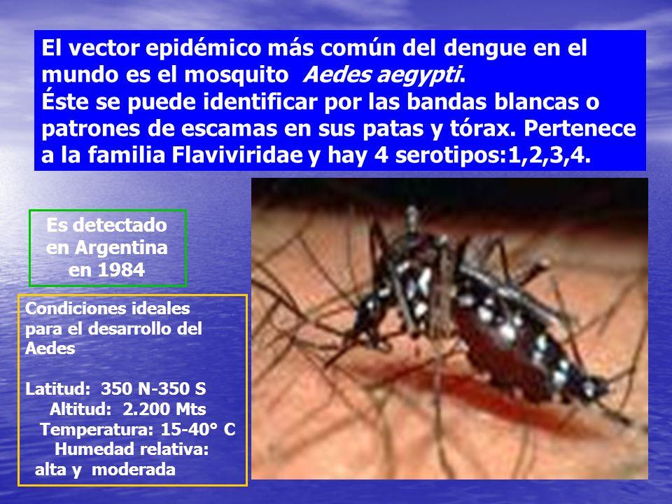 Es detectado en Argentina en 1984