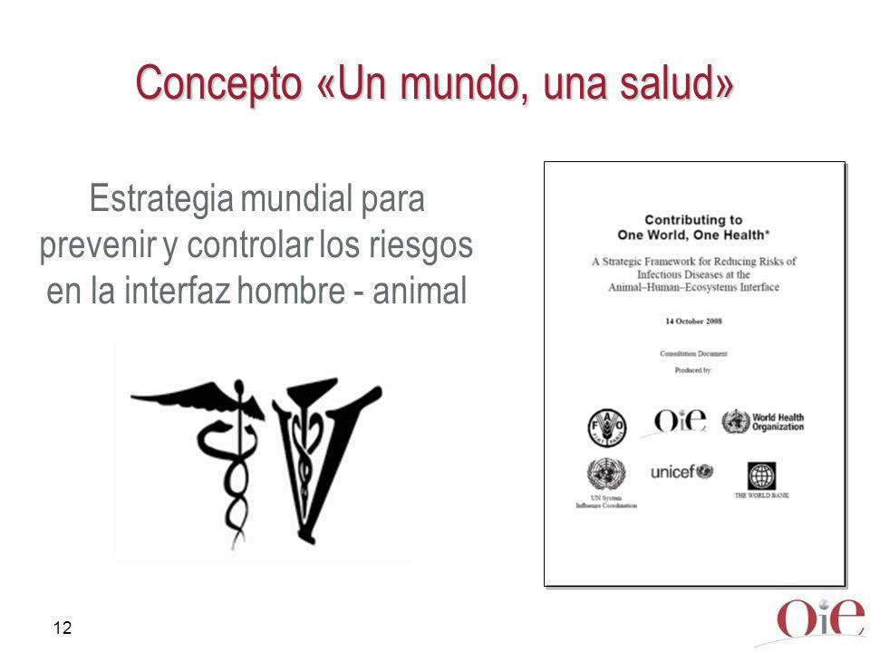 Concepto «Un mundo, una salud»