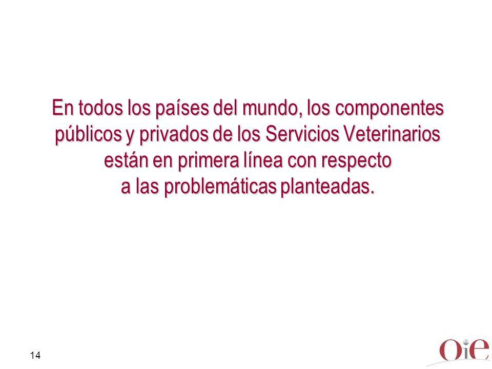 En todos los países del mundo, los componentes públicos y privados de los Servicios Veterinarios están en primera línea con respecto a las problemáticas planteadas.