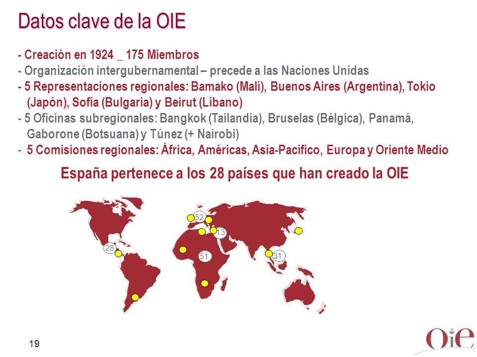 España pertenece a los 28 países que han creado la OIE