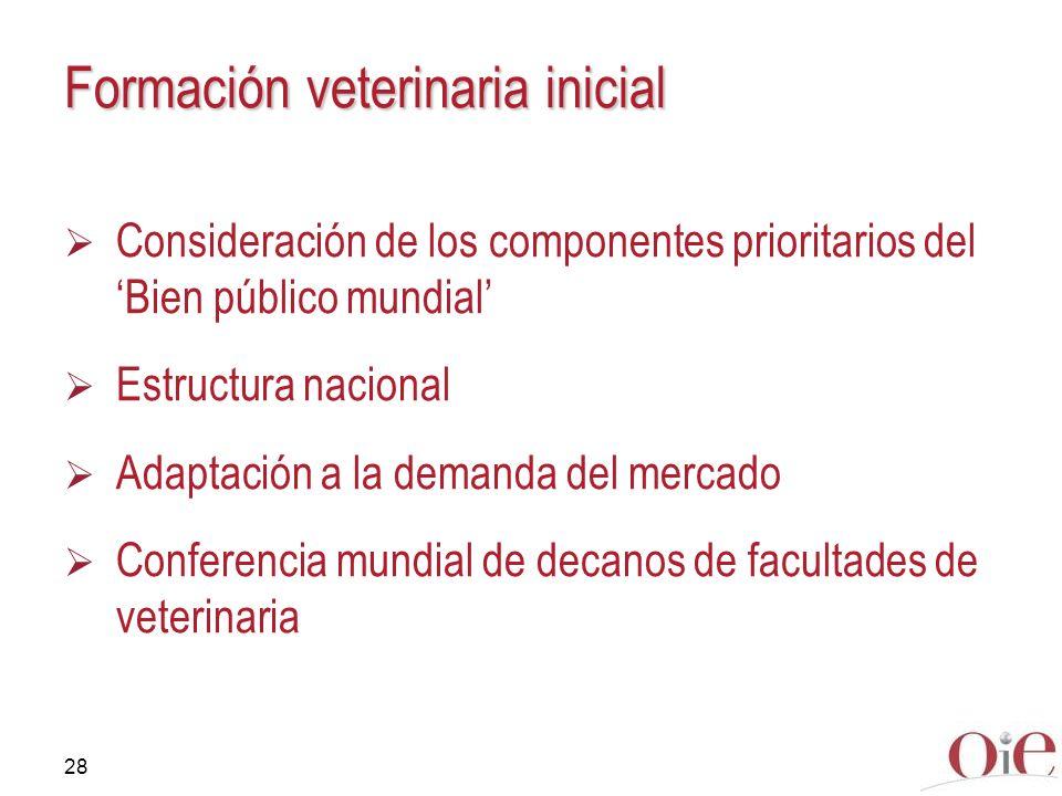 Formación veterinaria inicial