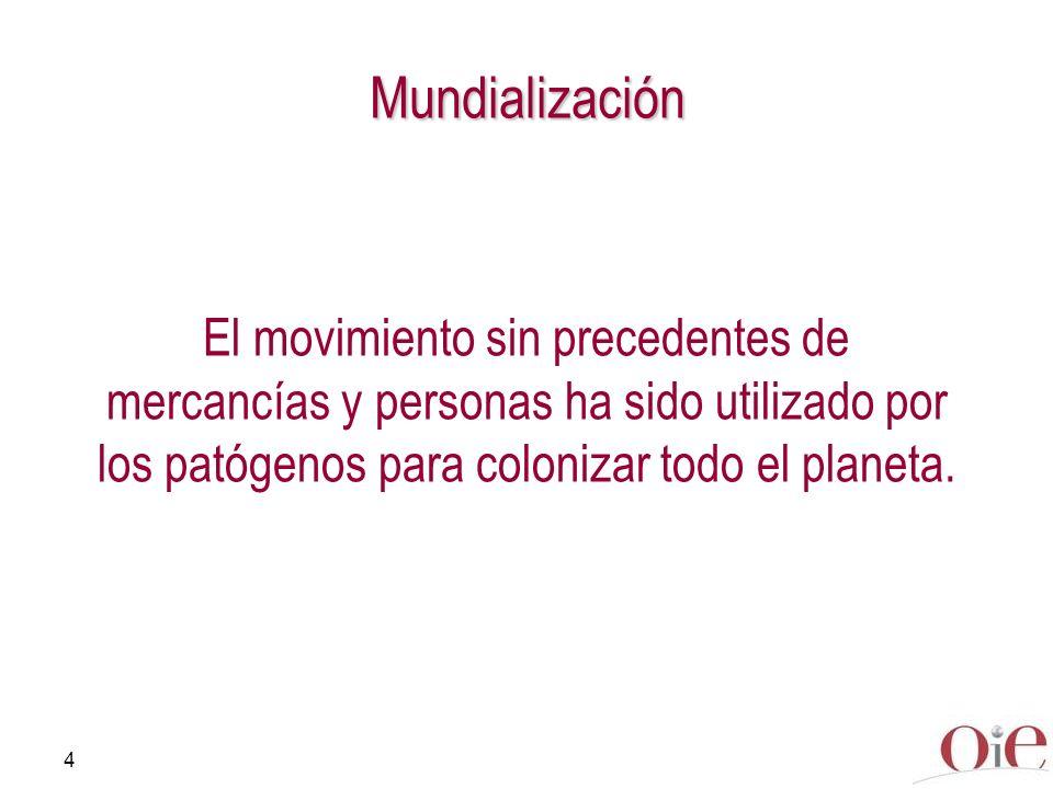 Mundialización El movimiento sin precedentes de mercancías y personas ha sido utilizado por los patógenos para colonizar todo el planeta.