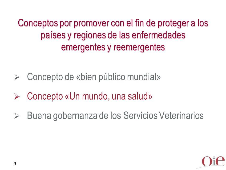 Conceptos por promover con el fin de proteger a los países y regiones de las enfermedades emergentes y reemergentes