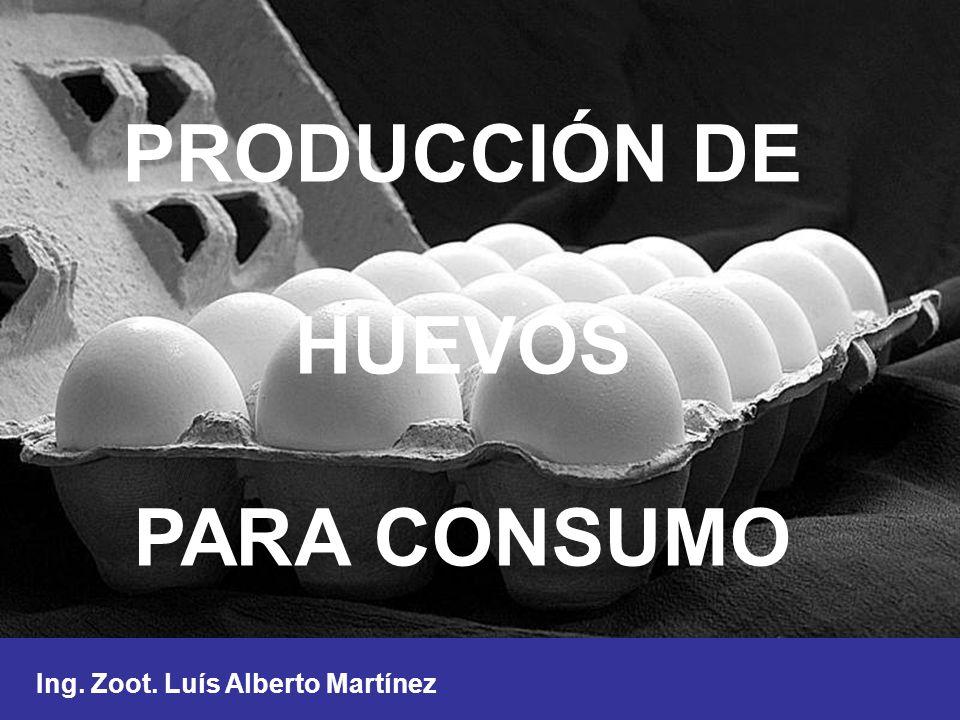 PRODUCCIÓN DE HUEVOS PARA CONSUMO