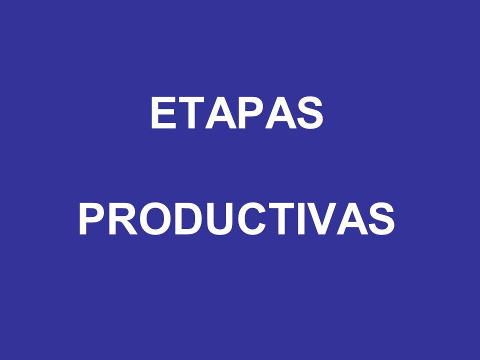 ETAPAS PRODUCTIVAS