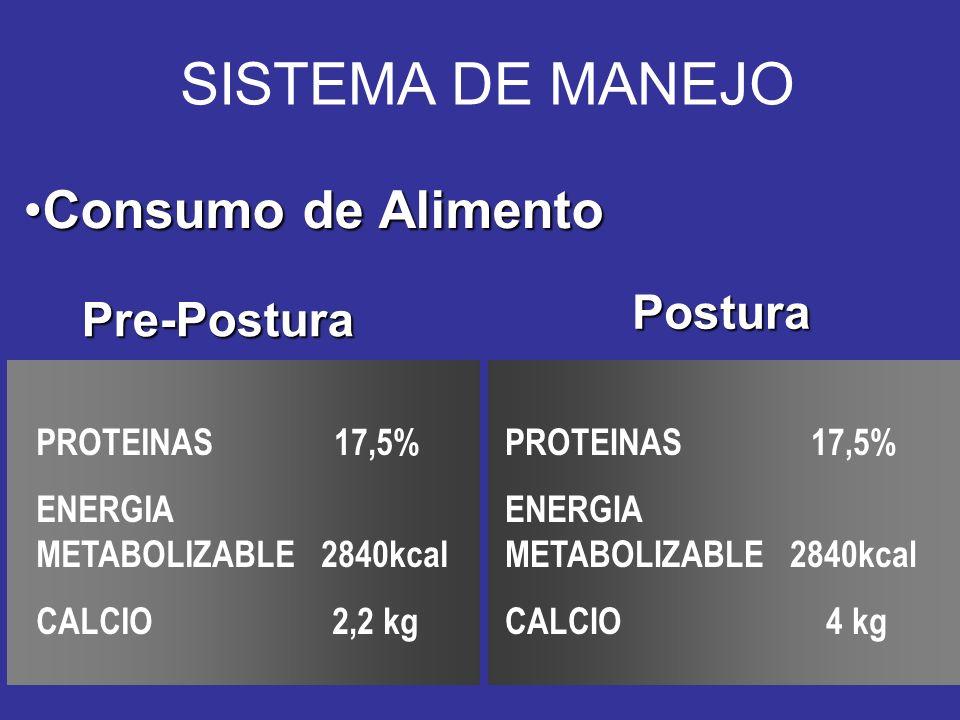 SISTEMA DE MANEJO Consumo de Alimento Postura Pre-Postura