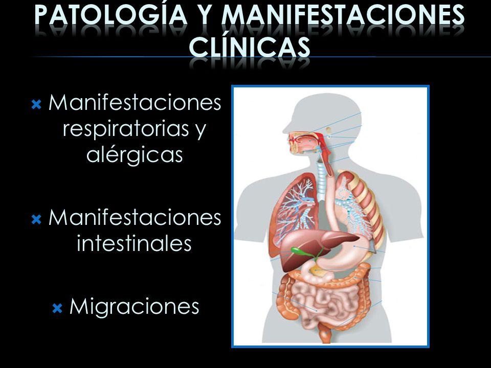 Patología y Manifestaciones clínicas
