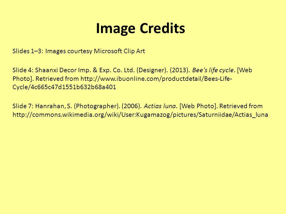 Image Credits Slides 1–3: Images courtesy Microsoft Clip Art