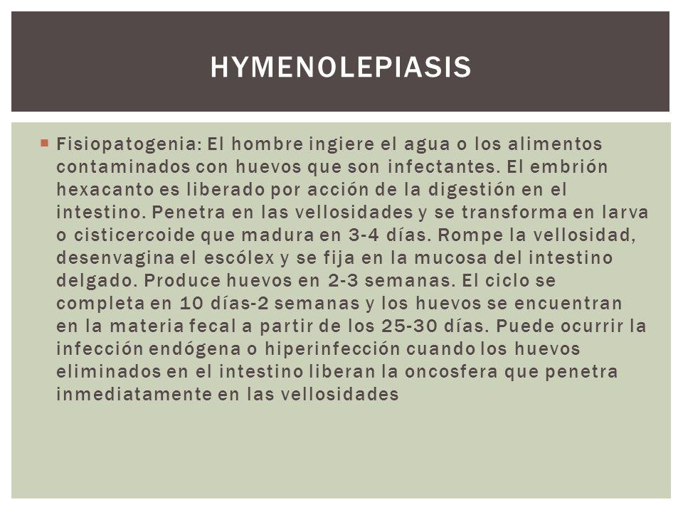 hymenolepiasis