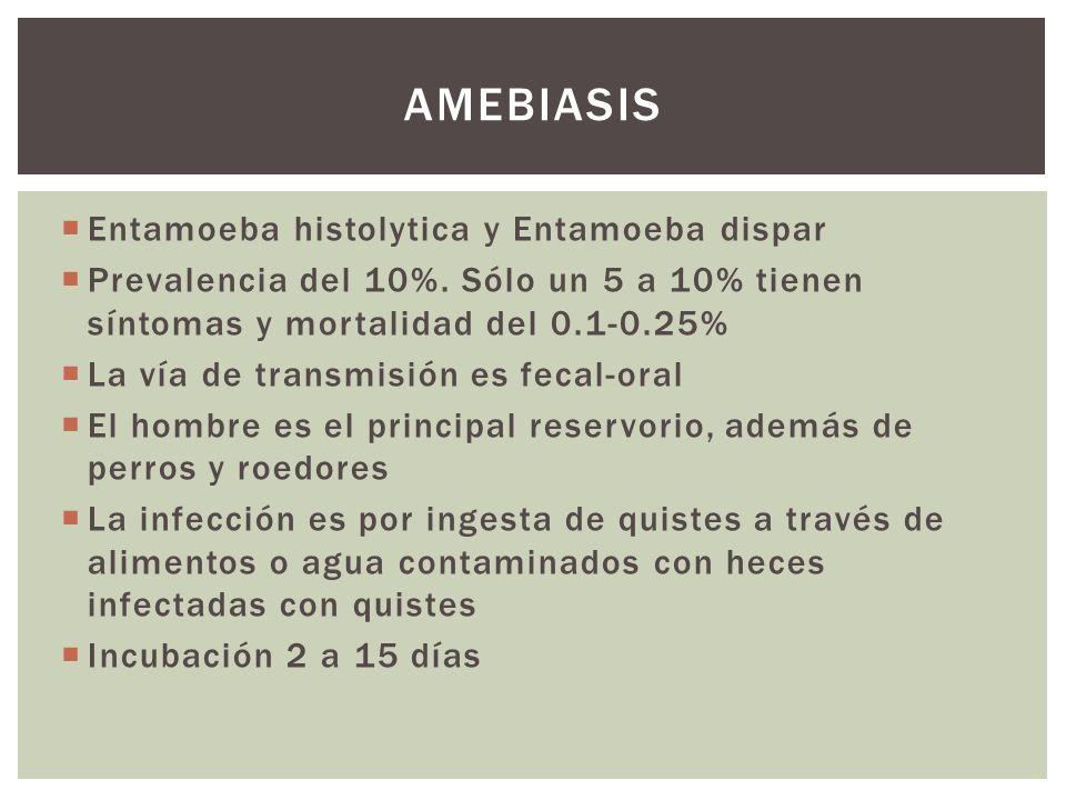 Amebiasis Entamoeba histolytica y Entamoeba dispar