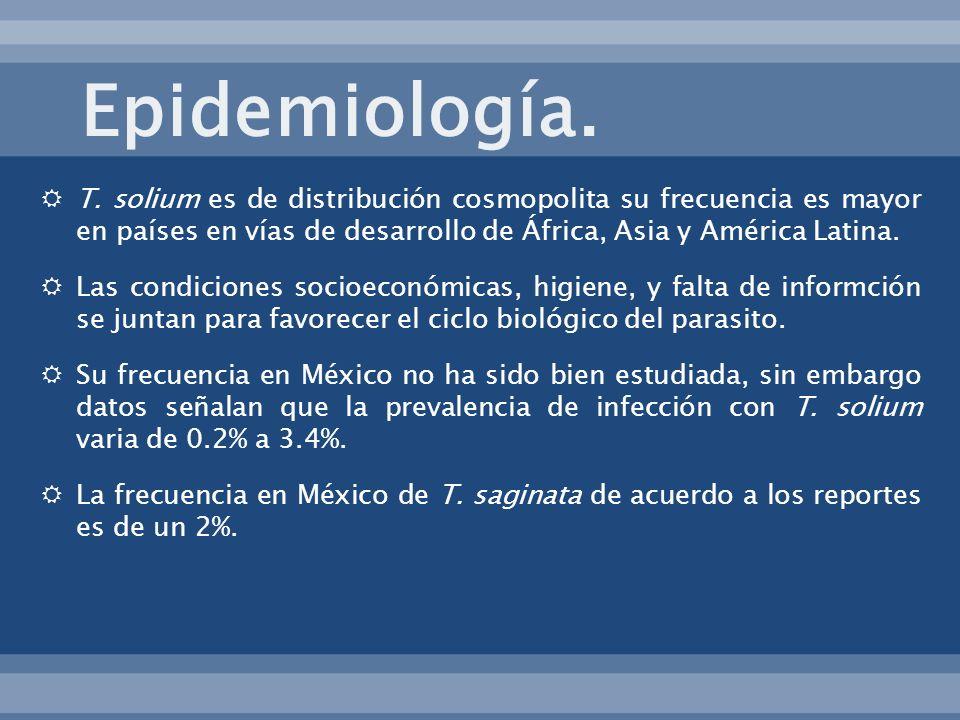 Epidemiología. T. solium es de distribución cosmopolita su frecuencia es mayor en países en vías de desarrollo de África, Asia y América Latina.