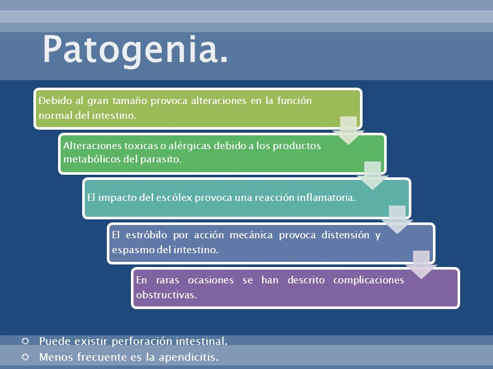 Patogenia. Puede existir perforación intestinal.