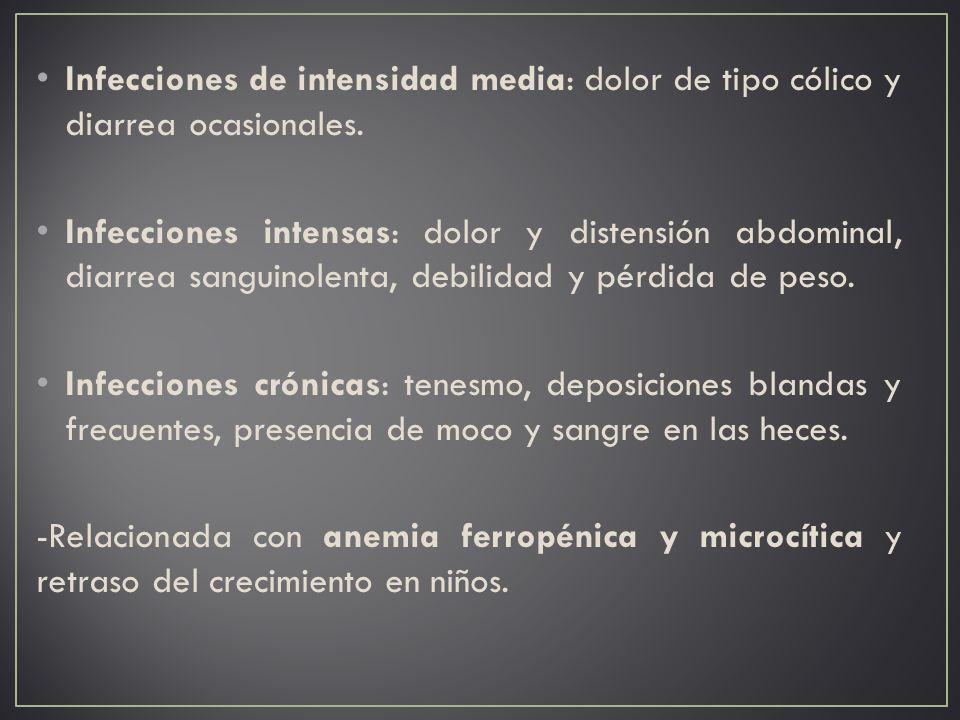Infecciones de intensidad media: dolor de tipo cólico y diarrea ocasionales.