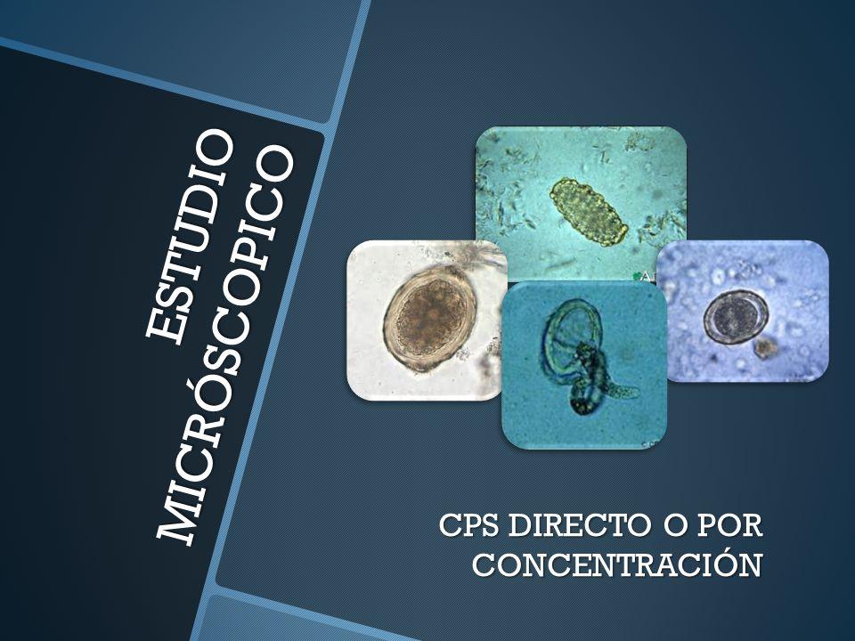 CPS DIRECTO O POR CONCENTRACIÓN