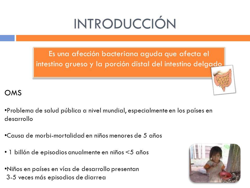 INTRODUCCIÓN Es una afección bacteriana aguda que afecta el intestino grueso y la porción distal del intestino delgado.