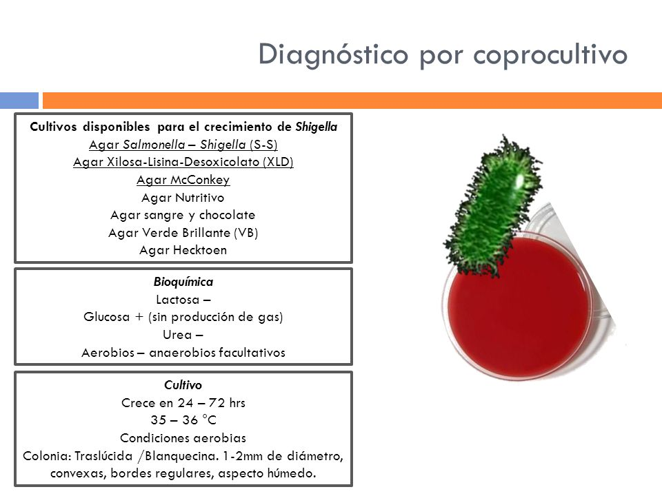 Diagnóstico por coprocultivo
