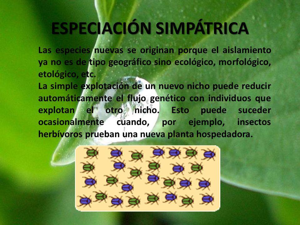 ESPECIACIÓN SIMPÁTRICA