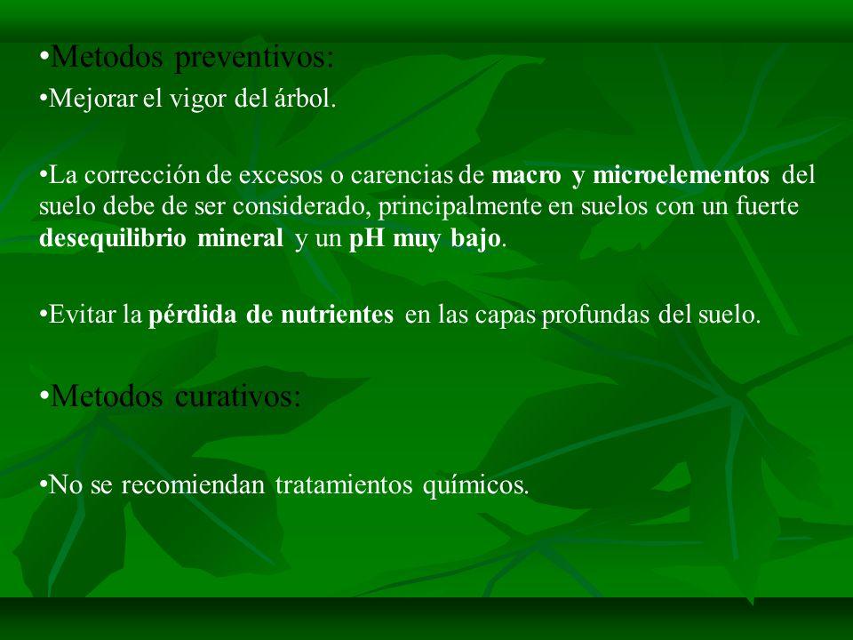 Metodos preventivos: Metodos curativos: