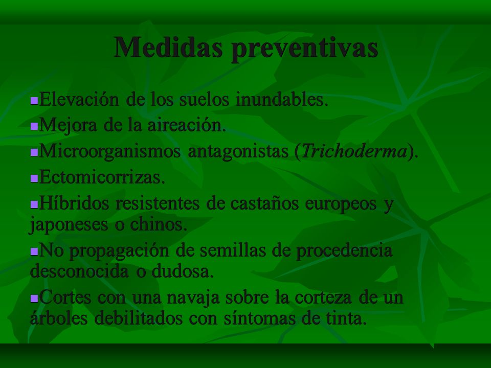 Medidas preventivas Elevación de los suelos inundables.