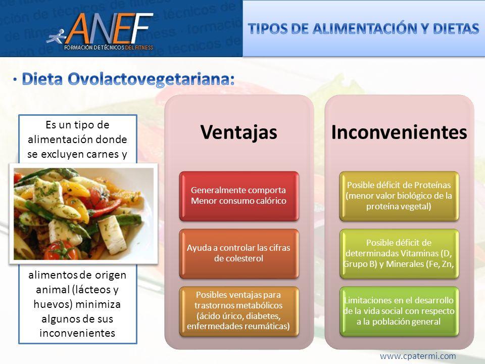TIPOS DE ALIMENTACIÓN Y DIETAS