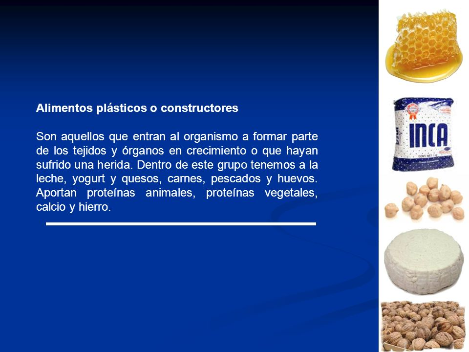 Alimentos plásticos o constructores