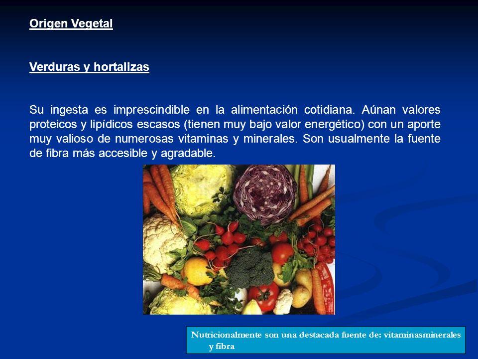 Origen Vegetal Verduras y hortalizas