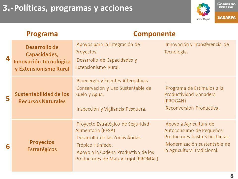 Sustentabilidad de los Recursos Naturales Proyectos Estratégicos