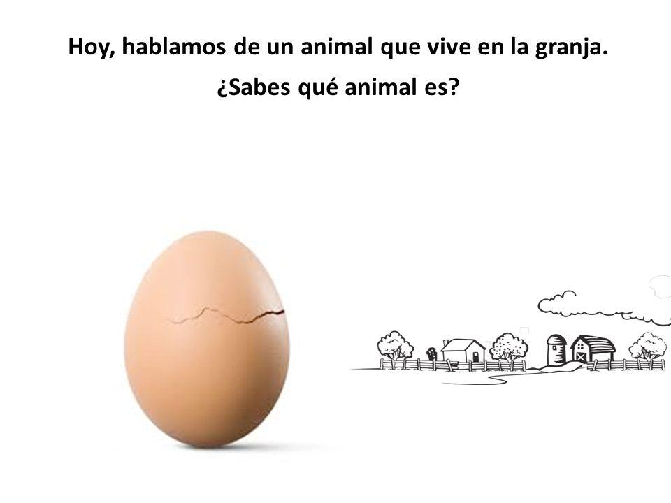 Hoy, hablamos de un animal que vive en la granja. ¿Sabes qué animal es