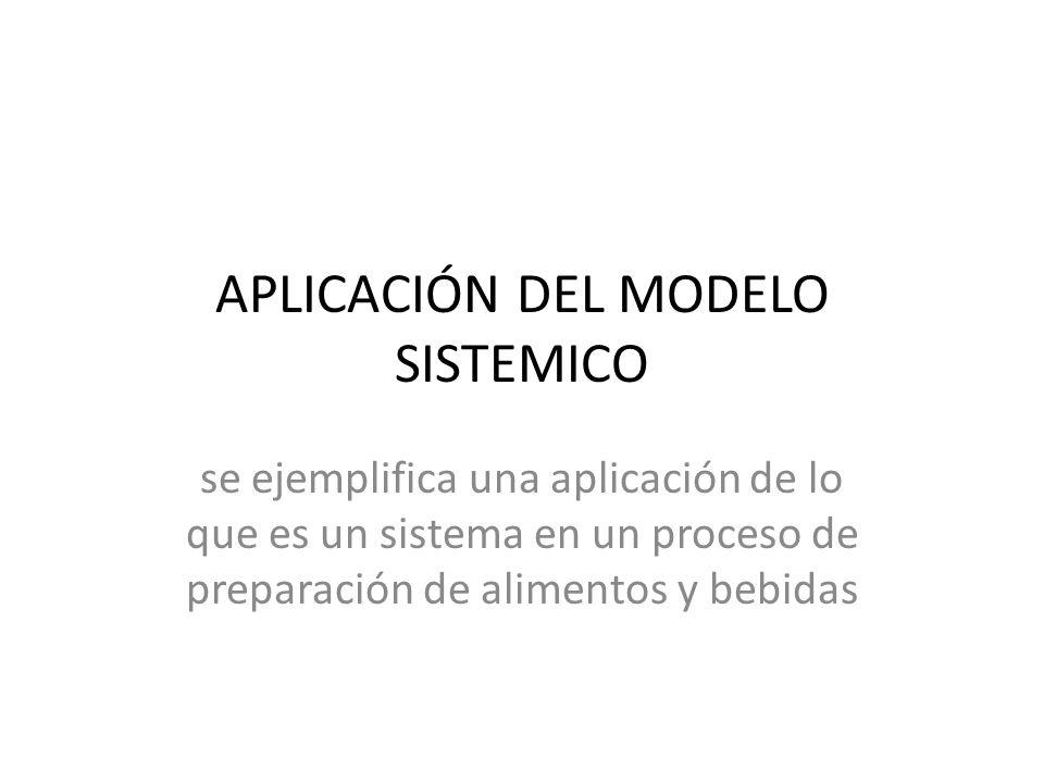 APLICACIÓN DEL MODELO SISTEMICO