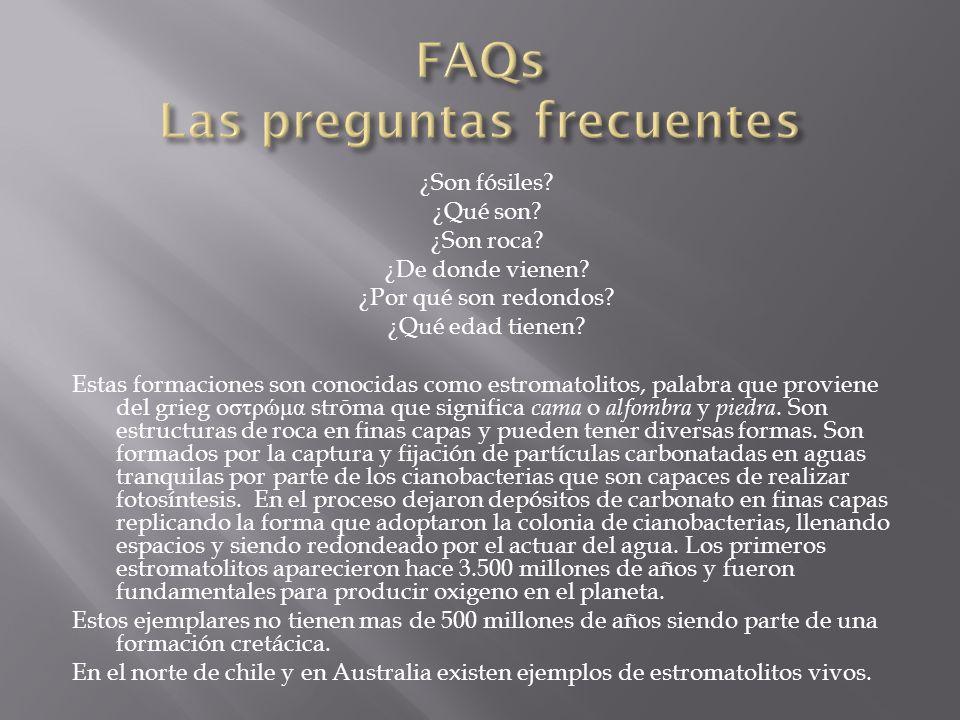 FAQs Las preguntas frecuentes