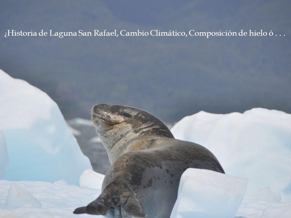 ¿Historia de Laguna San Rafael, Cambio Climático, Composición de hielo ó . . .