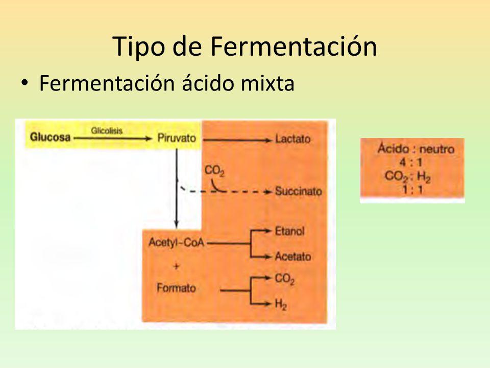 Tipo de Fermentación Fermentación ácido mixta