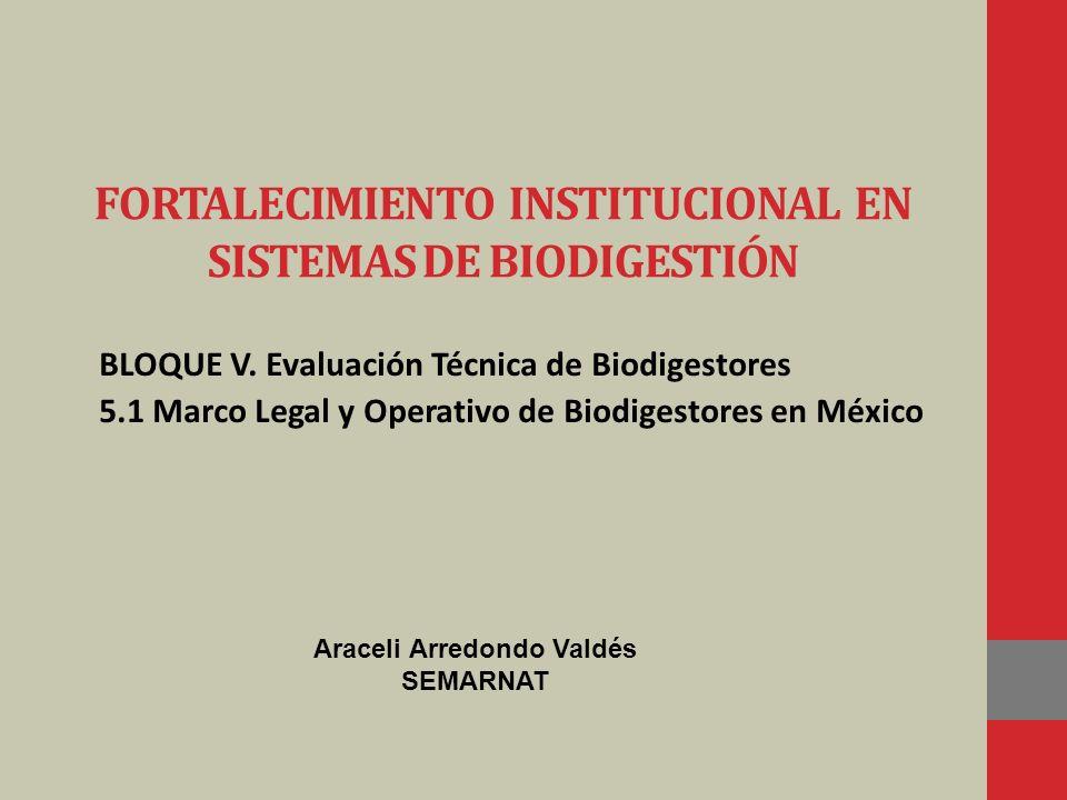 FORTALECIMIENTO INSTITUCIONAL EN SISTEMAS DE BIODIGESTIÓN