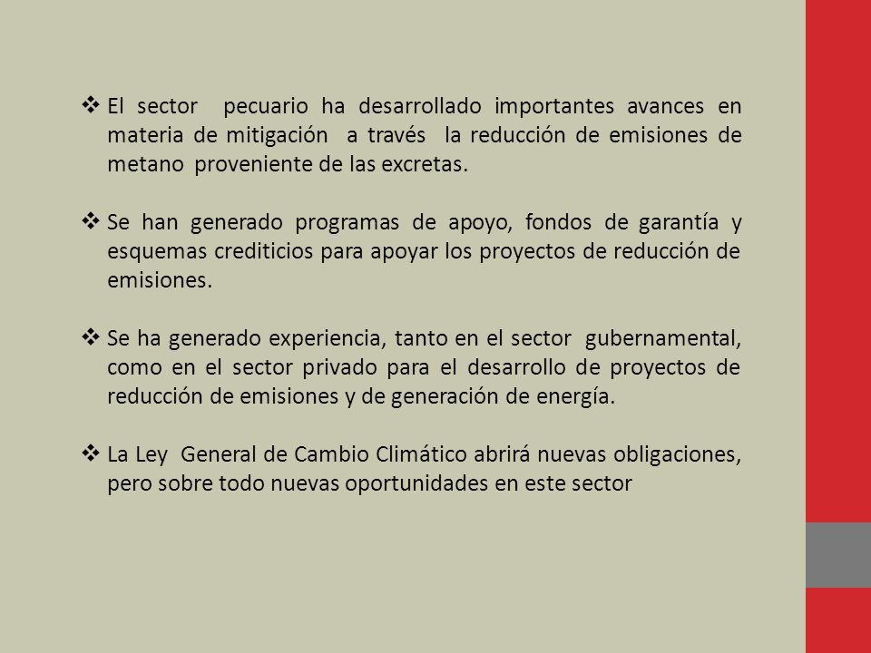 El sector pecuario ha desarrollado importantes avances en materia de mitigación a través la reducción de emisiones de metano proveniente de las excretas.