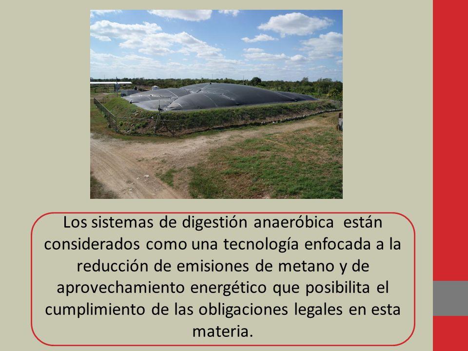 Los sistemas de digestión anaeróbica están considerados como una tecnología enfocada a la reducción de emisiones de metano y de aprovechamiento energético que posibilita el cumplimiento de las obligaciones legales en esta materia.