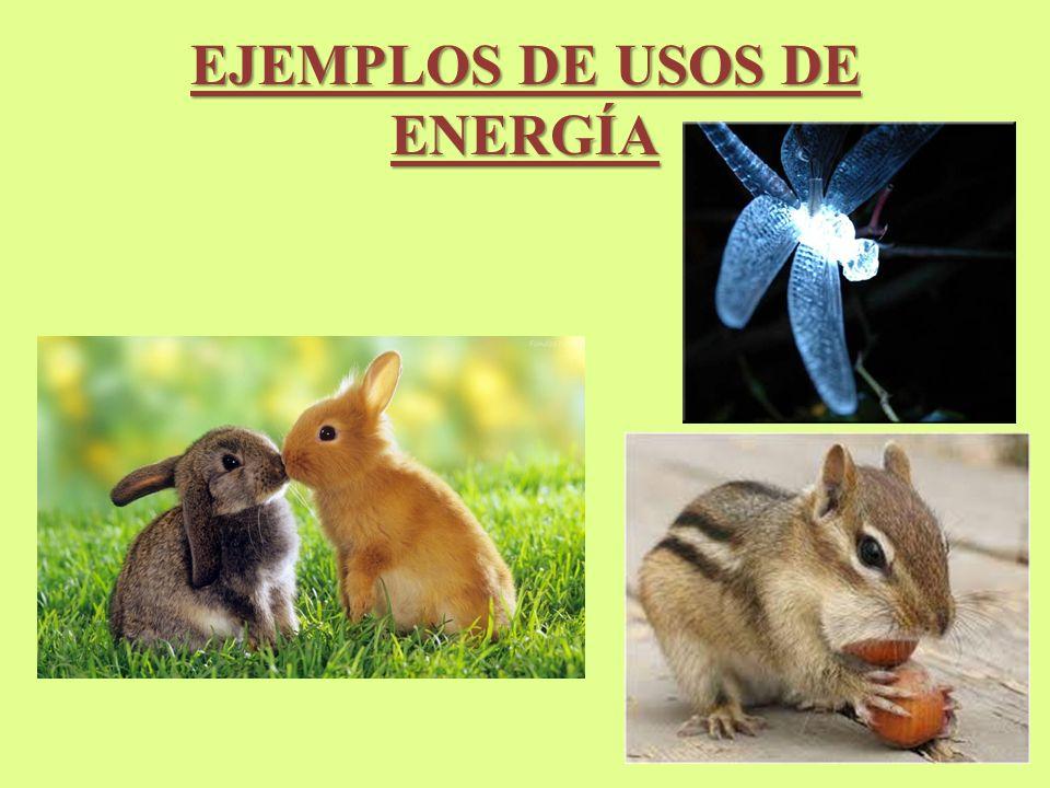 EJEMPLOS DE USOS DE ENERGÍA