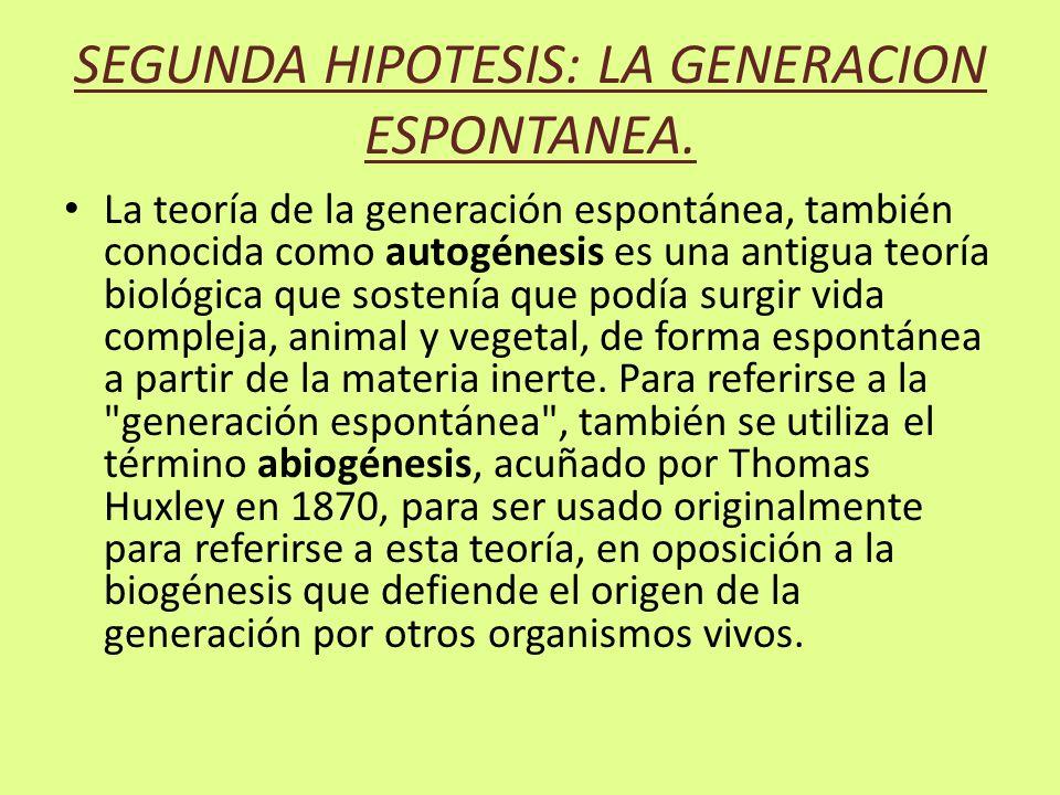 SEGUNDA HIPOTESIS: LA GENERACION ESPONTANEA.
