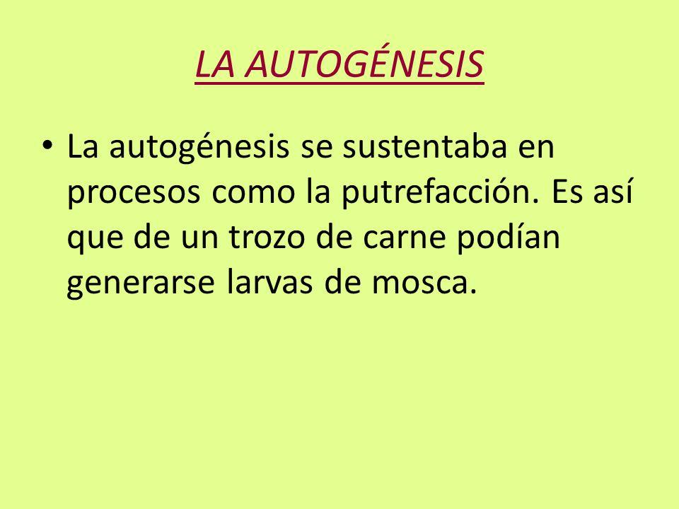 LA AUTOGÉNESIS La autogénesis se sustentaba en procesos como la putrefacción.