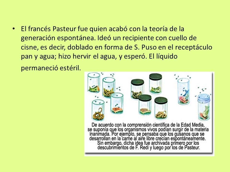 El francés Pasteur fue quien acabó con la teoría de la generación espontánea.