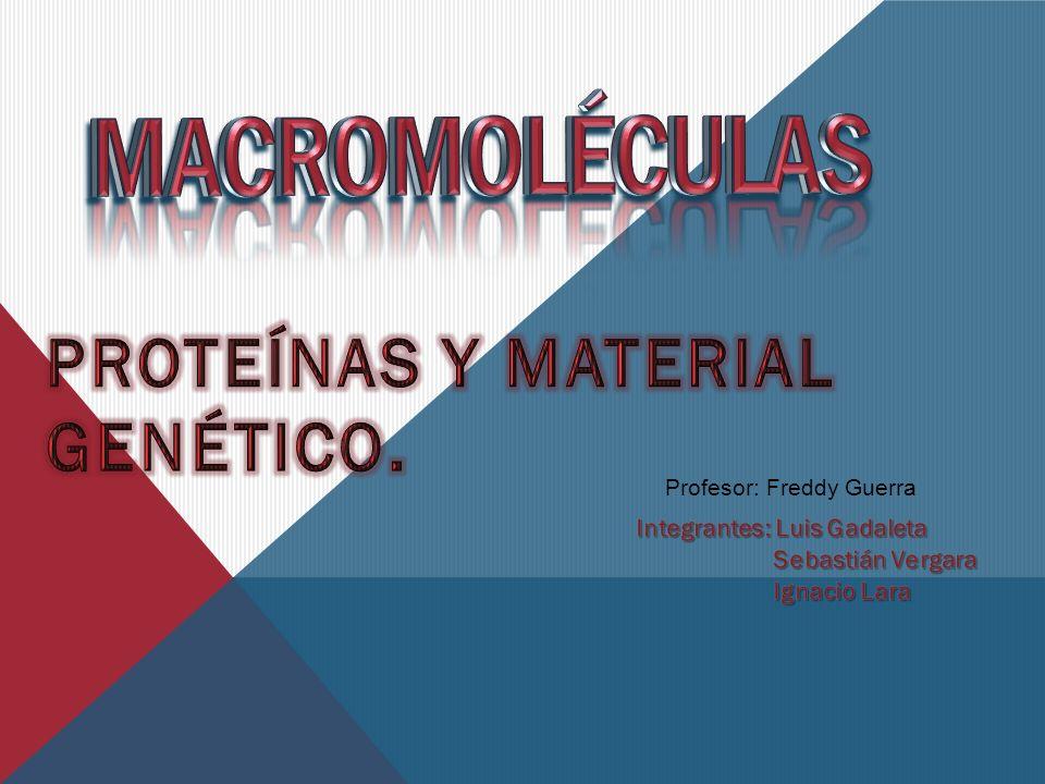 Proteínas y material genético.