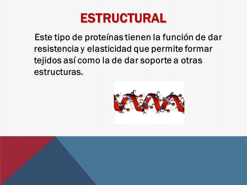 Estructural
