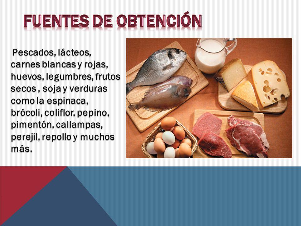 FUENTES DE OBTENCIÓN