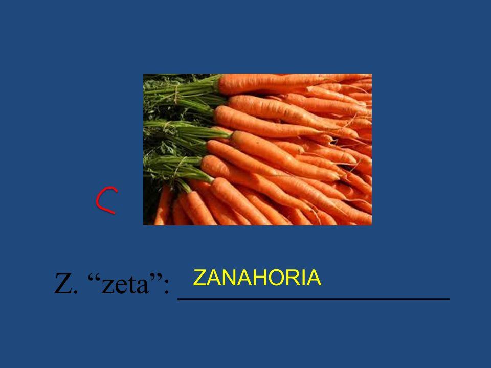 Z. zeta : __________________